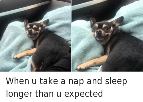 Funny Sleeping Meme : When u take a nap and sleep longer than u expected funny meme on