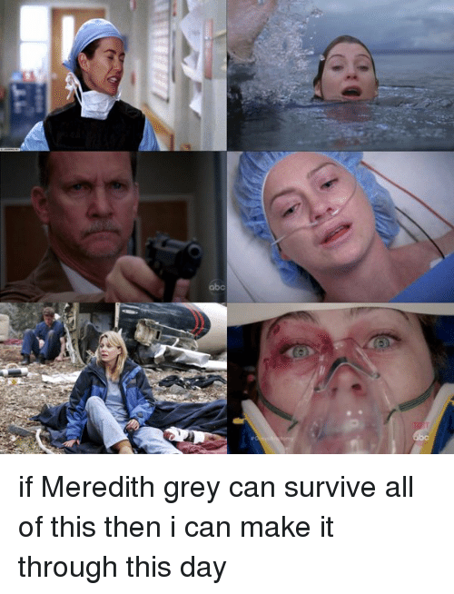 Twitter if Meredith grey can survive all 1b6e6f ✅ 25 best memes about meredith grey meredith grey memes,Meredith Meme Images