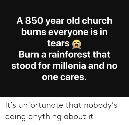 Church, Old, and Im 14 & This Is Deep: A 850 year old church  burns evervone is in  tears  Burn a rainforest that  stood for millenia and no  one Cares It's unfortunate that nobody's doing anything about it
