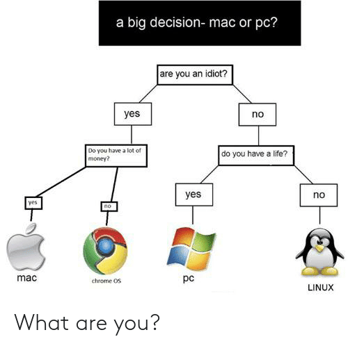 A Big Decision- Mac or Pc? Are You an Idiot? Yes No Do You