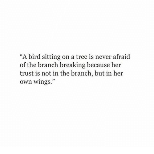 "Tree, Wings, and Never: ""A bird sitting on a tree is never afraid  of the branch breaking because her  trust is not in the branch, but in her  own wings."""
