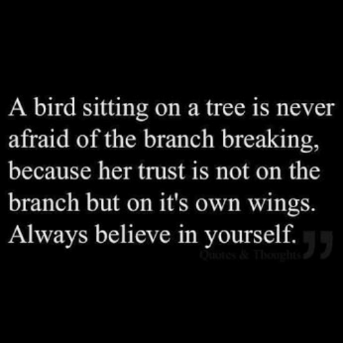 Tree, Wings, and Never: A bird sitting on a tree is never  afraid of the branch breaking,  because her trust is not on the  branch but on it's own wings.  Always believe in yourself.