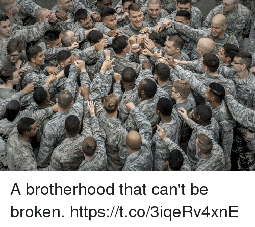 Memes, 🤖, and Brotherhood: A brotherhood that can't be broken. https://t.co/3iqeRv4xnE