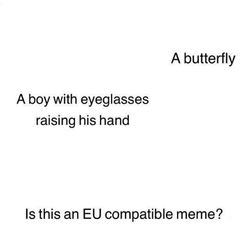 Meme, Memes, and Butterfly: A butterfly  A boy with eyeglasses  raising his hand  Is this an EU compatible meme?