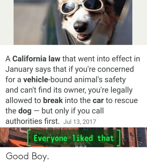 A California Law That Went Into Effect in January Says That