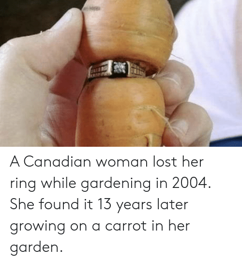 Lost, Canadian, and Her: A Canadian woman lost her ring while gardening in 2004. She found it 13 years later growing on a carrot in her garden.