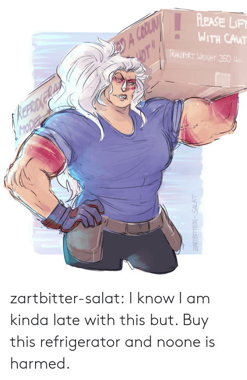 Sears, Tumblr, and Blog: A CBOLIN  HOT  PLEASE LIF  WITH CAUT  TRANSPORT WEIGHT 350 Ls.  KEFRIDNERAN  MODE  SEARS  ZARTBITTER-SALAT zartbitter-salat:  I know I am kinda late with this but. Buy this refrigerator and noone is harmed.