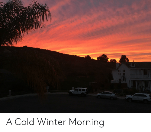Winter, Cold, and Morning: A Cold Winter Morning