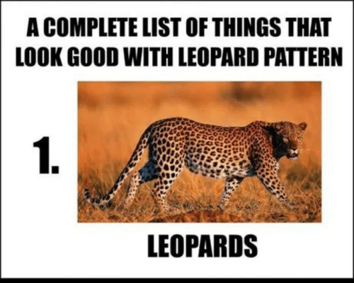 Good, List, and Leopard: A COMPLETE LIST OF THINGS THAT  LOOK GOOD WITH LEOPARD PATTERN  LEOPARDS