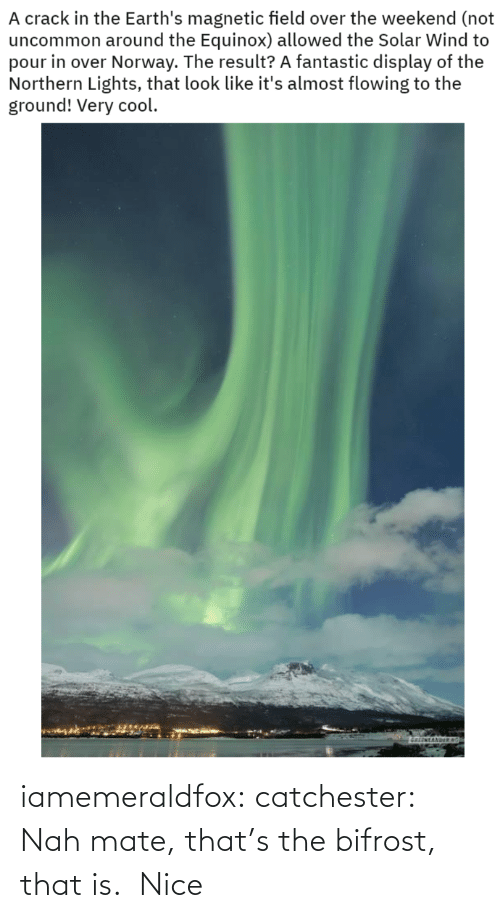 Target, Tumblr, and Blog: A crack in the Earth's magnetic field over the weekend (not  uncommon around the Equinox) allowed the Solar Wind to  pour in over Norway. The result? A fantastic display of the  Northern Lights, that look like it's almost flowing to the  ground! Very cool.  atenTANDE iamemeraldfox:  catchester: Nah mate, that's the bifrost, that is.   Nice
