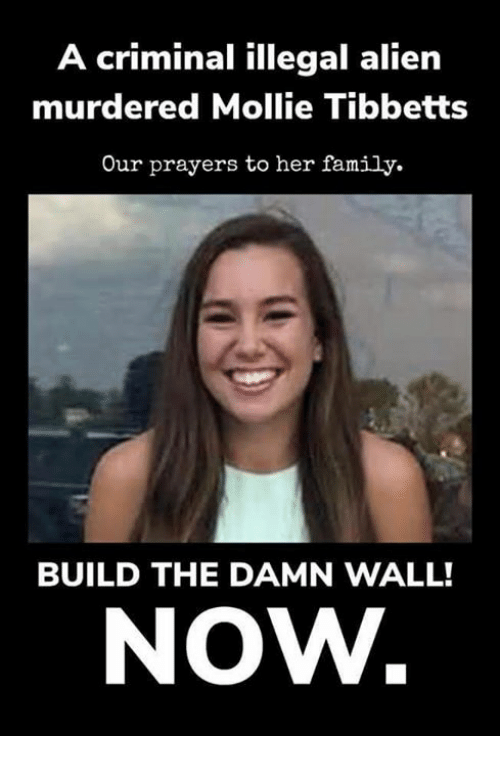 Family, Memes, and Alien: A criminal illegal alien  murdered Mollie Tibbetts  Our prayers to her family.  BUILD THE DAMN WALL!  NOW.