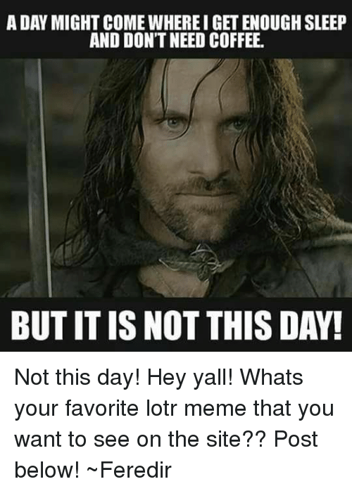 a dan might come whereigetenough sleep and dont need coffee 23234893 ✅ 25 best memes about lotr meme lotr memes,Whats The Latest Meme