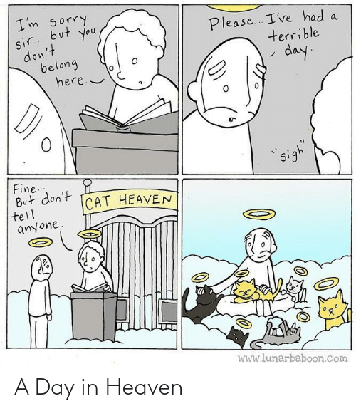 Heaven, Day, and In Heaven: A Day in Heaven