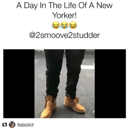 Life, New Yorker, and Day: A Day In The Life Of A New  Yorker!  @2smoove2studder  ti itsbizkit