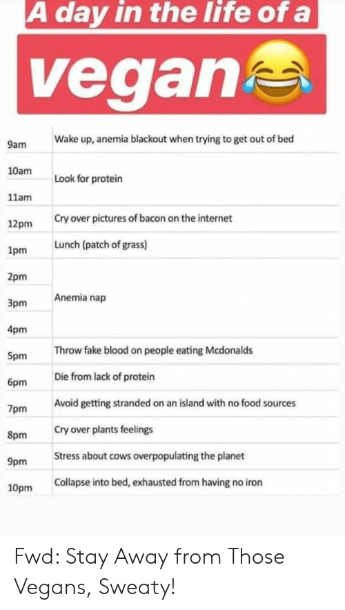 Fake, Food, and Internet: A day in the life ofa  vegan  Wake up, anemia blackout when trying to get out of bed  9am  10am  Look for protein  11am  Cry over pictures of bacon on the internet  12pm  1pm  2pm  3pm  4pm  Spm  6pm  7pm  8pm  9pm  10pm  Lunch (patch of grass)  Anemia nap  Throw fake blood on people eating Mcdonalds  Die from lack of protein  Avoid getting stranded on an island with no food sources  Cry over plants feelings  Stress about cows overpopulating the planet  Collapse into bed, exhausted from having no iron Fwd: Stay Away from Those Vegans, Sweaty!