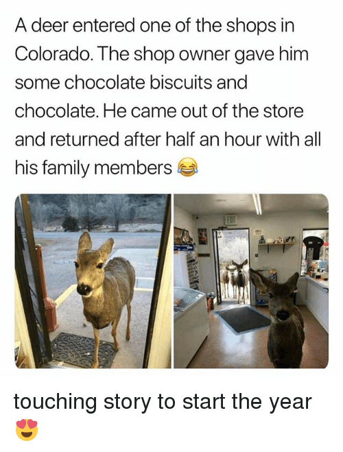 Deer, Family, and Memes: A deer entered one of the shops in  Colorado. The shop owner gave him  some chocolate biscuits and  chocolate. He came out of the store  and returned after half an hour with all  his family members touching story to start the year 😍