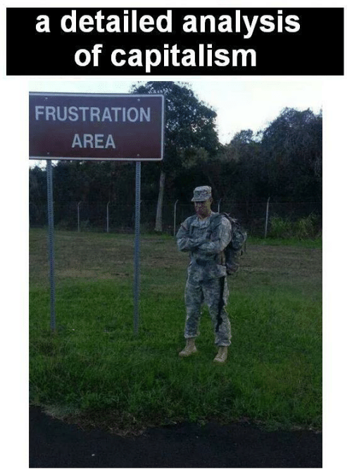 Capitalism, Analysis, and  Frustration: a detailed analysis  of capitalism  FRUSTRATION  AREA