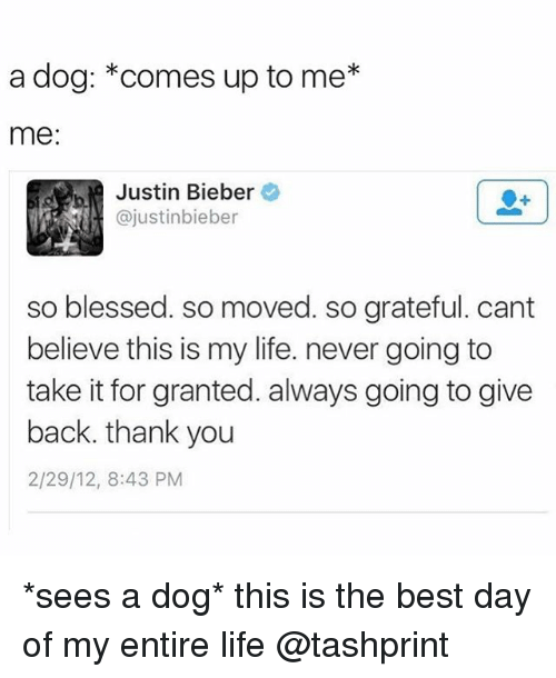 Blessed, Justin Bieber, and Life: a dog: comes up to me*  me:  Justin Bieber  ajustinbieber  so blessed. so moved. so grateful. cant  believe this is my life. never going to  take it for granted. always going to give  back. thank you  2/29/12, 8:43 PM *sees a dog* this is the best day of my entire life @tashprint