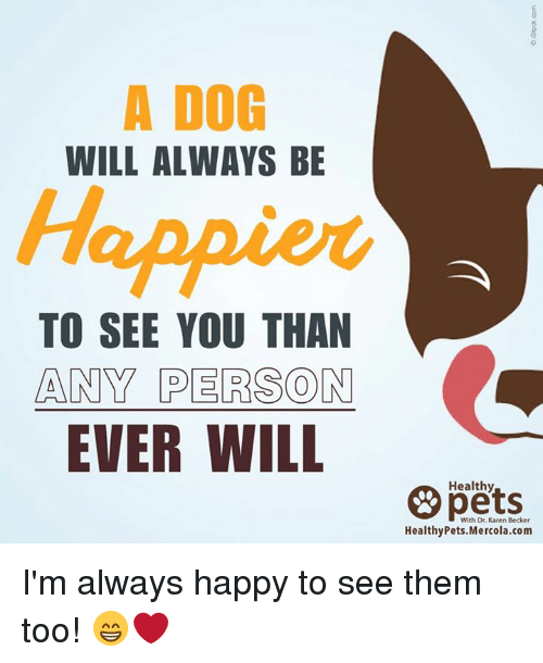 Memes, 🤖, and Personal: A DOG  WILL ALWAYS BE  Happier  TO SEE YOU THAN  ANY PERSON  EVER WILL  Healthy  With Dr. Karen Becker  Healthy Pets. Mercola.com I'm always happy to see them too! 😁❤