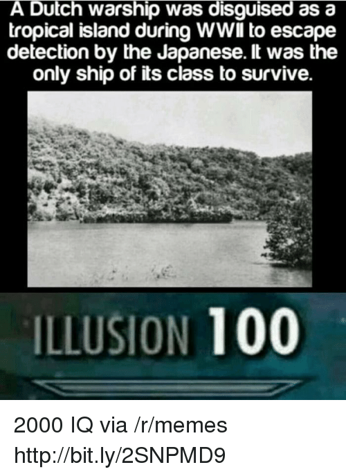Anaconda, Memes, and Http: A Dutch warship was disguised as a  tropical island during WWlIl to escape  detection by the Japanese. lt was the  only ship of its class to survive.  ILLUSION 100 2000 IQ via /r/memes http://bit.ly/2SNPMD9