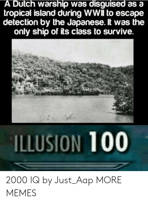 Anaconda, Dank, and Memes: A Dutch warship was disguised as a  tropical island during WWlIl to escape  detection by the Japanese. lt was the  only ship of its class to survive.  ILLUSION 100 2000 IQ by Just_Aap MORE MEMES