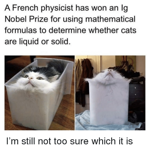 Cats, Nobel Prize, and French: A French physicist has won an Ig  Nobel Prize for using mathematical  formulas to determine whether cats  are liquid or solid I'm still not too sure which it is