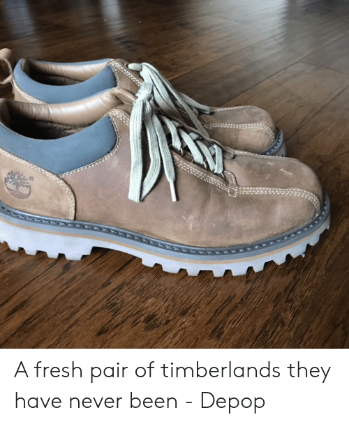 bf9875fae8d Fresh, Never, and Been: A fresh pair of timberlands they have never been