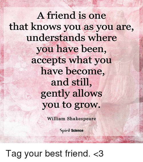 A Friend Is One That Knows You As You Are Understands Where You Have