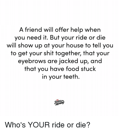 Dank, Food, and Shit: A friend will offer help when  you need it. But your ride or die  will show up at your house to tell you  to get your shit together, that your  eyebrows are jacked up, and  that you have food stuck  in your teeth.  canij Who's YOUR ride or die?