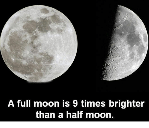 Image result for A full moon is nine times brighter than a half moon.