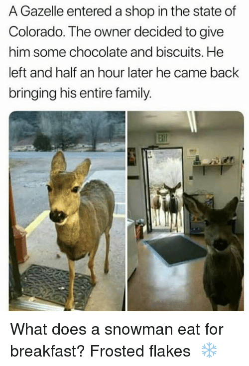 Family, Memes, and Breakfast: A Gazelle entered a shop in the state of  Colorado. The owner decided to give  him some chocolate and biscuits. He  left and half an hour later he came back  bringing his entire family What does a snowman eat for breakfast? Frosted flakes ⛇❄
