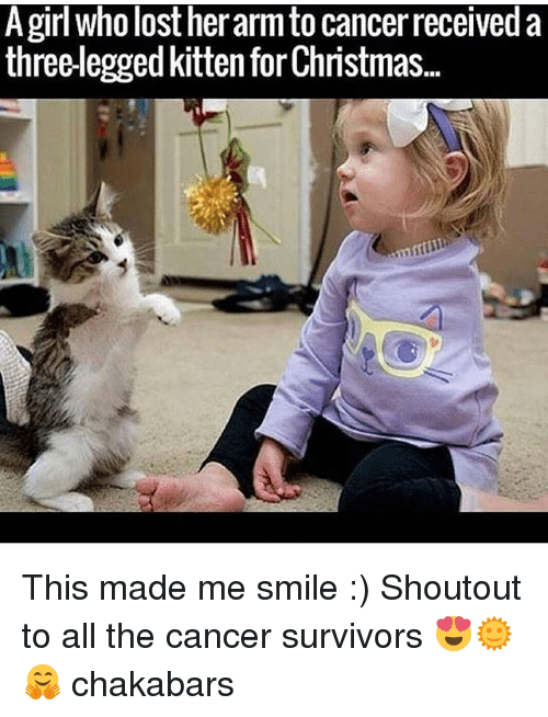 Christmas, Memes, and Lost: A girl who lost her arm to cancer received a  three-legged kitten for Christmas.. This made me smile :) Shoutout to all the cancer survivors 😍🌞🤗 chakabars