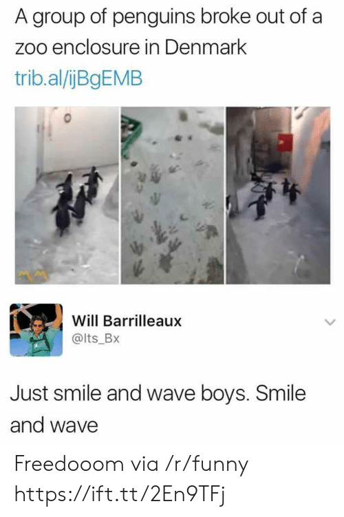 Funny, Denmark, and Penguins: A group of penguins broke out of a  zoo enclosure in Denmark  trib.al/ijBgEMB  Will Barrilleaux  @lts_Bx  Just smile and wave boys. Smile  and wave Freedooom via /r/funny https://ift.tt/2En9TFj