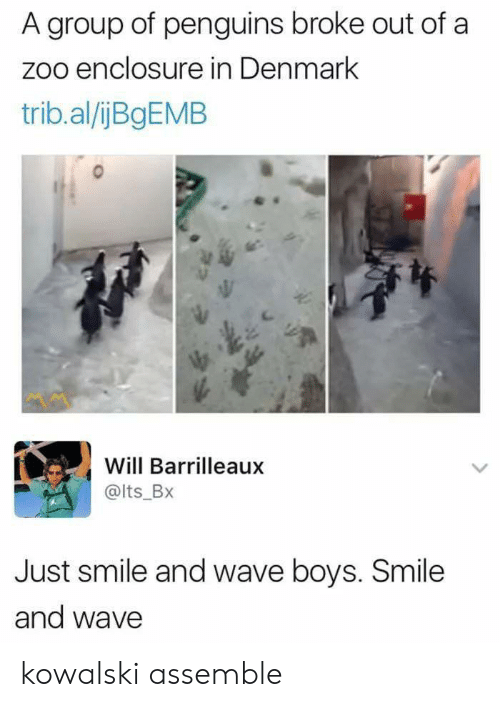 Denmark, Penguins, and Smile: A group of penguins broke out of a  zoo enclosure in Denmark  trib.al/ijBgEMB  Will Barrilleaux  @lts_BX  Just smile and wave boys. Smile  and wave kowalski assemble