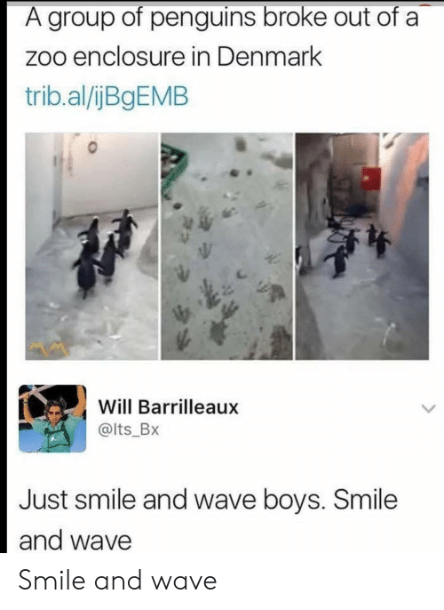 Denmark, Penguins, and Smile: A group of penguins broke out of a  zoo enclosure in Denmark  trib.al/ijBgEMB  Will Barrilleaux  @lts_Bx  Just smile and wave boys. Smile  and wave Smile and wave