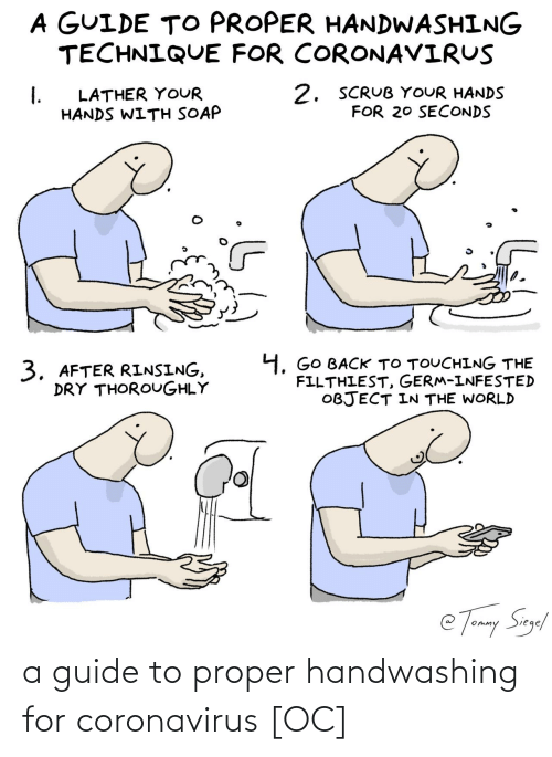 Guide, For, and Proper: a guide to proper handwashing for coronavirus [OC]