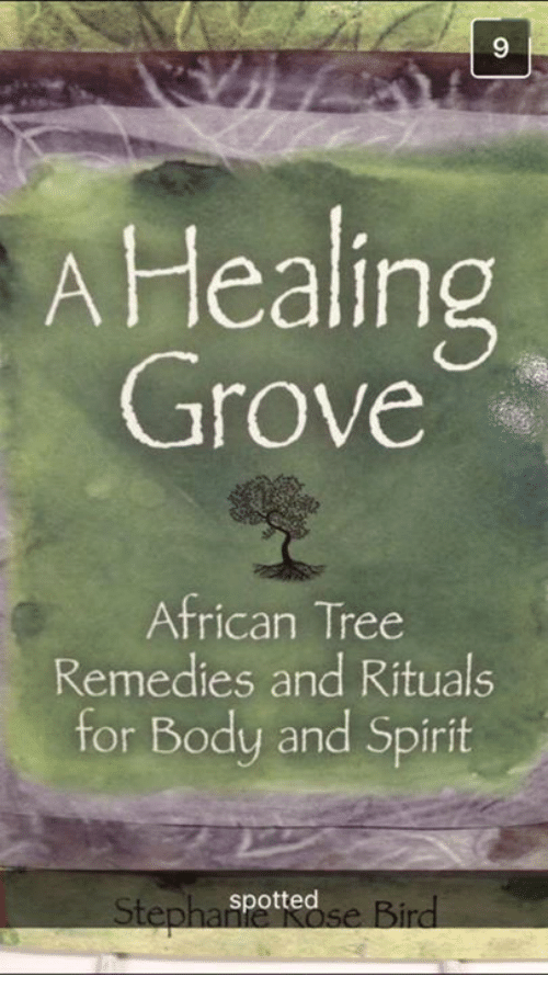 FAQ For A Healing Grove Novel of African Tree Remedies and Rituals
