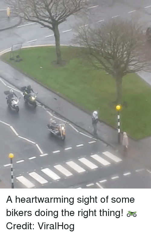 Thing, Right, and Bikers: A heartwarming sight of some bikers doing the right thing! 🏍  Credit: ViralHog