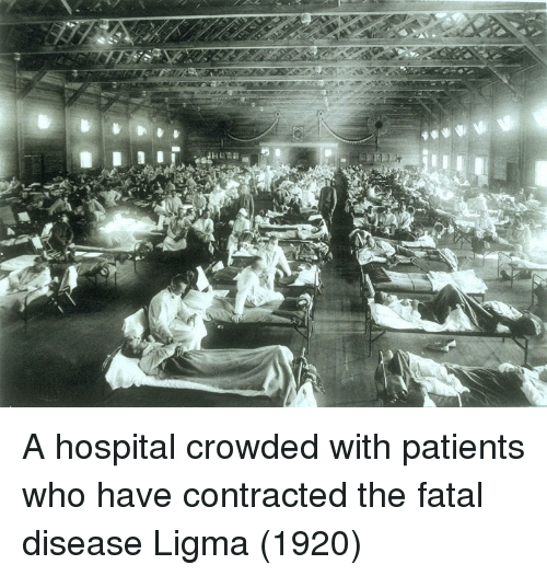 Hospital, Who, and Disease: A hospital crowded with patients who have contracted the fatal disease Ligma (1920)