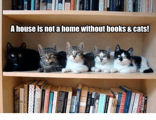 Books, Cats, and Memes: A house is nota home without books & Cats!
