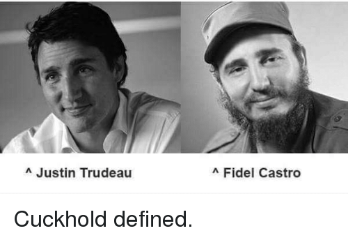 Image result for trudeau castro