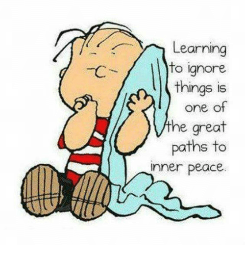 Ignorant, Memes, and Ignorance: A Learning  to ignore  things is  one of  he great  paths to  inner peace.