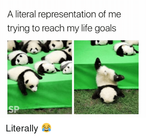 Goals, Life, and Reach: A literal representation of me  trying to reach my life goals  SP Literally 😂