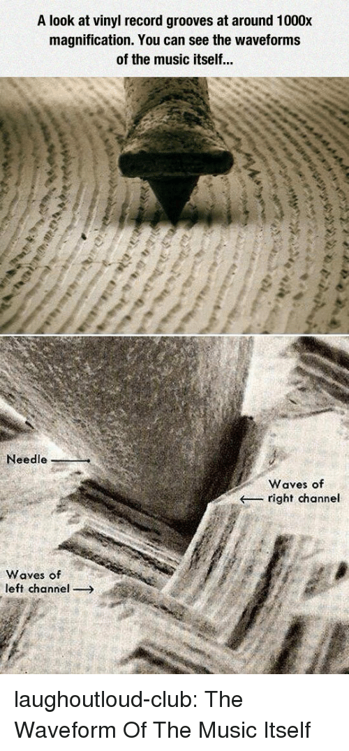 Club, Music, and Tumblr: A look at vinyl record grooves at around 1000x  magnification. You can see the waveforms  of the music itself...  Needle  Waves of  right channel  Waves of  left channel laughoutloud-club:  The Waveform Of The Music Itself