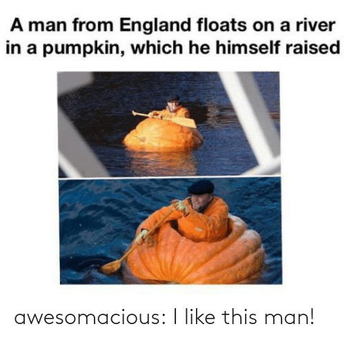 England, Tumblr, and Blog: A man from England floats on a river  in a pumpkin, which he himself raised awesomacious:  I like this man!