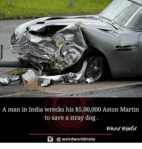 A Man In India Wrecks His 500000 Aston Martin To Save A Stray Dog