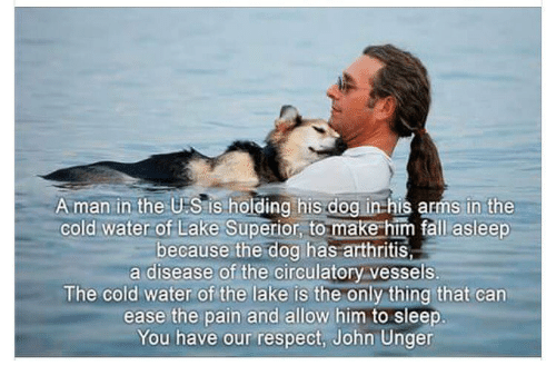 Fall, Memes, and Respect: A man in the UES is holding his dog in his arms in the  cold water of Lake Superior, to  make him fall asleep  because the dog has arthritis  a disease of the circulatory vessels  The cold water of the lake is the only thing that can  ease the pain and allow him to sleep.  You have our respect,  John Unger