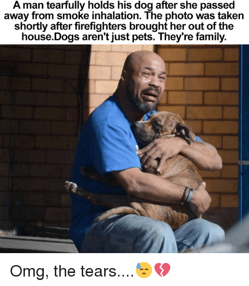 Dogs, Family, and Memes: A man tearfully holds his dog after she passed  away from smoke inhalation. The photo was taken  shortly after firefighters brought her out of the  house Dogs aren't just pets. They're family. Omg, the tears....😓💔