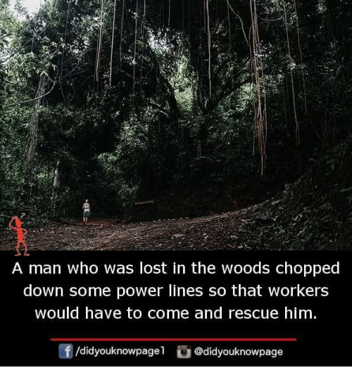 Memes, Lost, and Power: A man who was lost in the woods chopped  down some power lines so that workers  would have to come and rescue him  f/didyouknowpagel@didyouknowpage