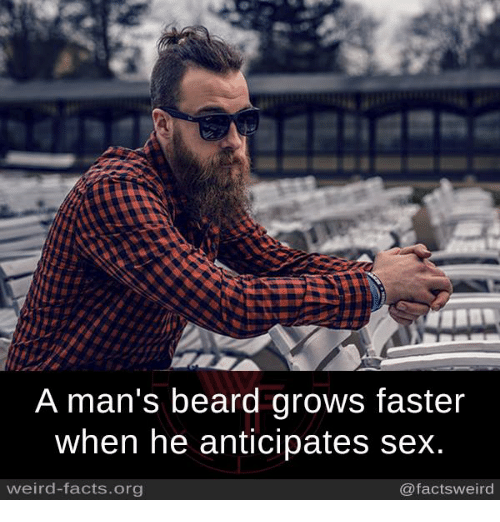 sex makes beard grow faster